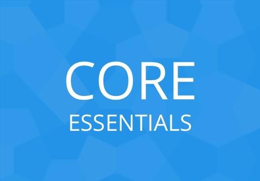 Dojo Core: The Essentials